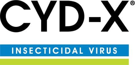 CYD-X