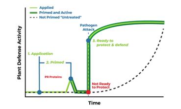 Plant Defense Activity