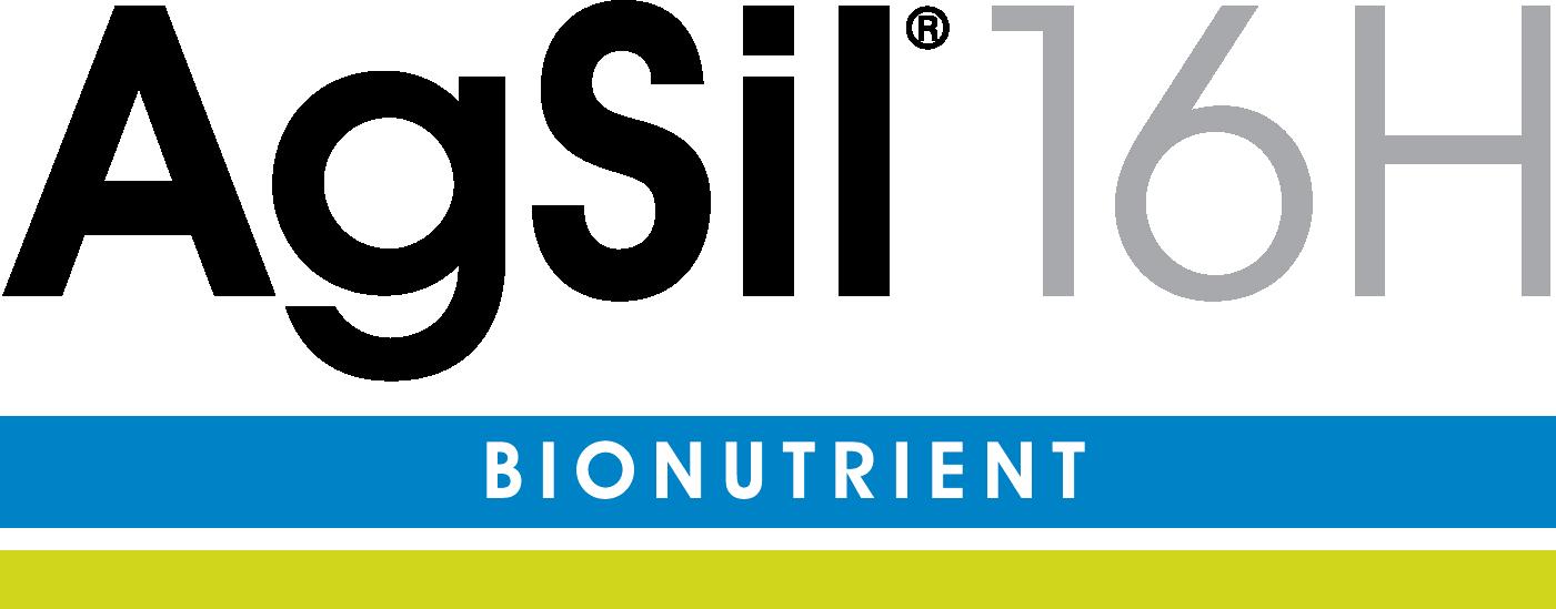 AgSil 16H